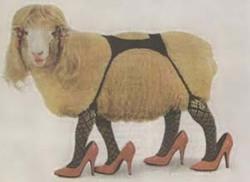 Lamb_1